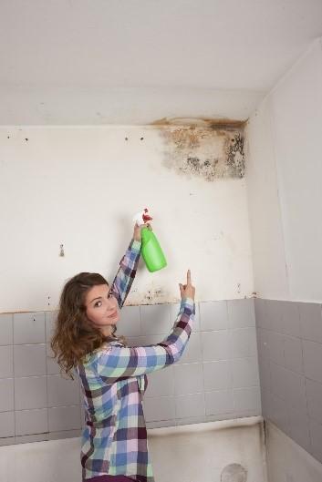 U nekim sobama i kupaonici mi se pojavila plijesan. Kako je se mogu riješiti?